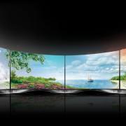 écrans OLED par LG