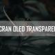 écran bled transparent